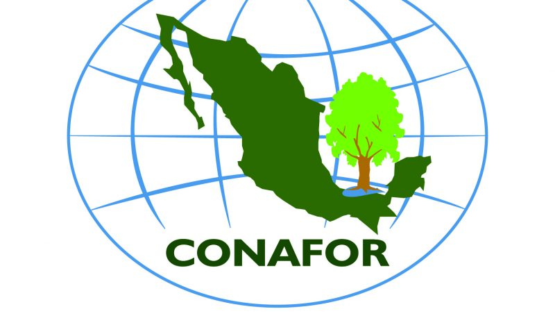 Apoyos CONAFOR para Punta de Mita